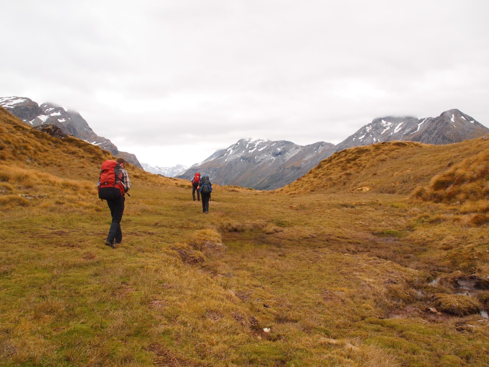 Walking in New Zealand by Danielle Curnow-Andreason